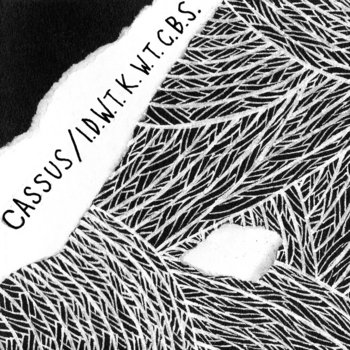 Cassus/I Don't Want To Know Why The Caged Bird Sings split cover art
