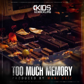 Too Much Memory cover art