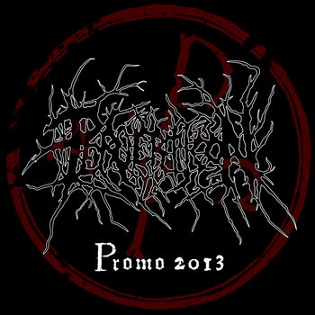 Promo 2013 cover art