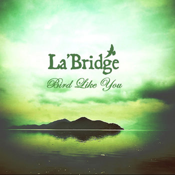 Bird Like You cover art
