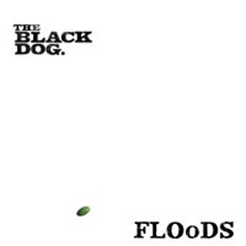 Floods cover art