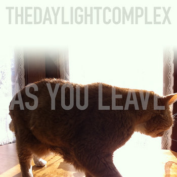 As You Leave (demo) cover art