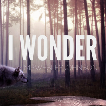I Wonder cover art