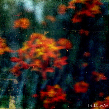 The Fall (TW004) cover art