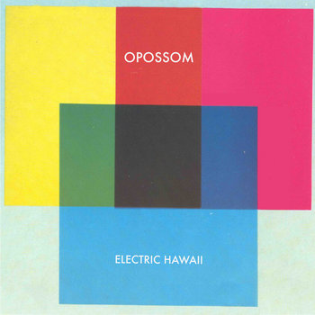 ELECTRIC HAWAII cover art