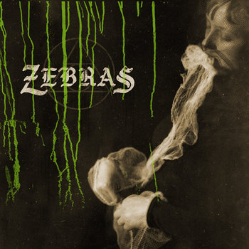 Zebras cover art