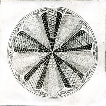 Diatoms cover art