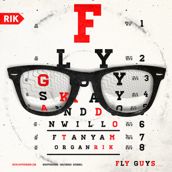Fly Guys cover art