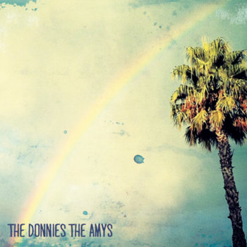 The Donnies The Amys cover art
