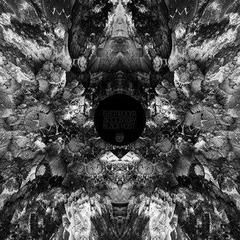 Black Host cover art