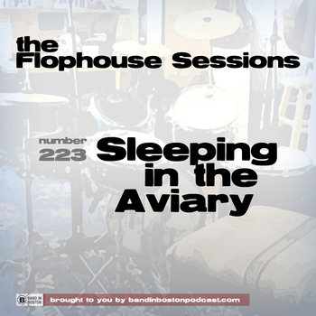 #223: Sleeping in the Aviary cover art