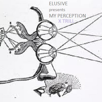 MY PERCEPTION X TRILL cover art