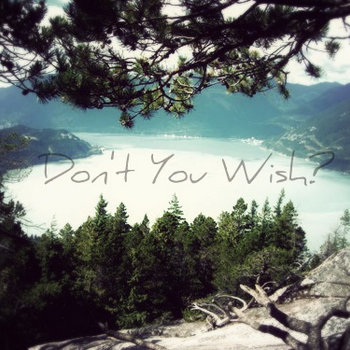 Don&#39;t You Wish? cover art