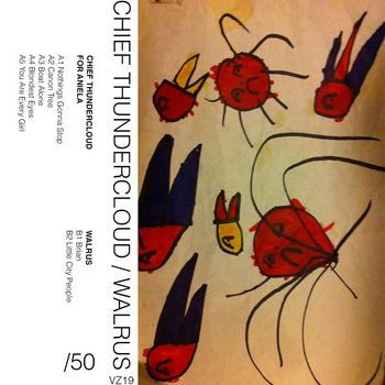 Walrus b/w Chief Thundercloud cassette split cover art