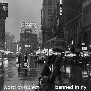 banned in ny cover art