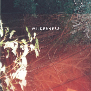 WILDERNESS cover art