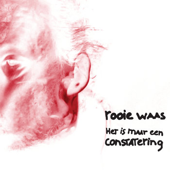 Het is maar een constatering cover art