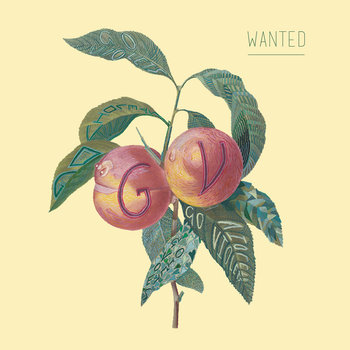 Wanted cover art