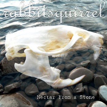 Nectar From a Stone cover art