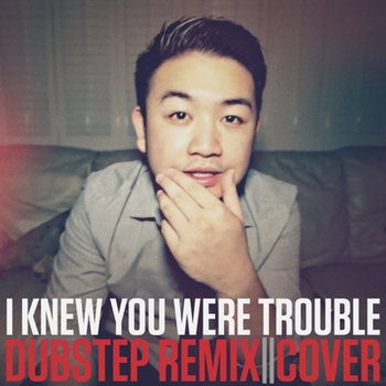 I Knew You Were Trouble (Dubstep Remix) cover art