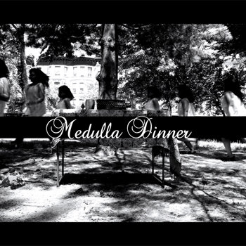 Nikki NTU Vs. Brainfeeder: Medulla Dinner cover art