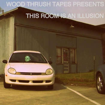 This Room Is An Illusion: A Wood Thrush Tapes Compilation cover art