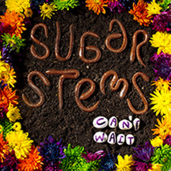 Sugar Stems - Can't Wait cover art