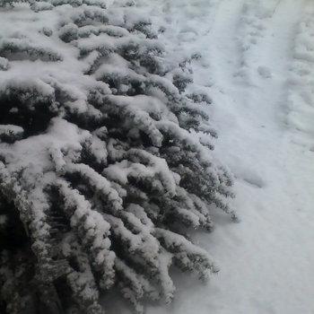 Eissturm - Winter (2014)