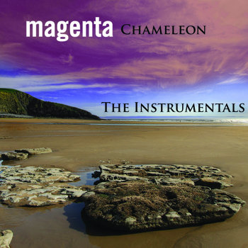 Chameleon : The Instrumentals cover art