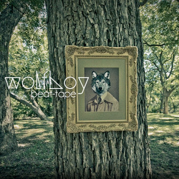 the wolfboy collection cover art