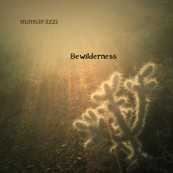 Bewilderness cover art