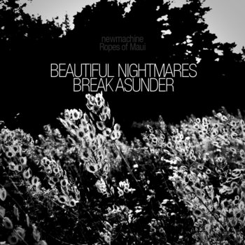 Beautiful Nightmares Break Asunder cover art