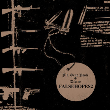 Falsehopes 2 cover art