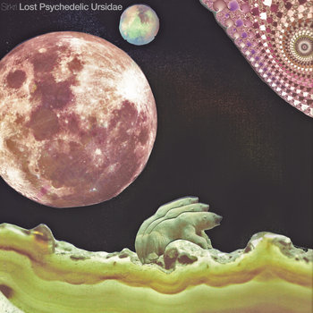 Lost Psychedelic Ursidae cover art