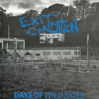 Days Of Wild Skies LP cover art