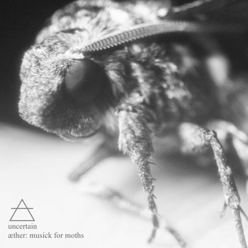 ther: musick for moths cover art