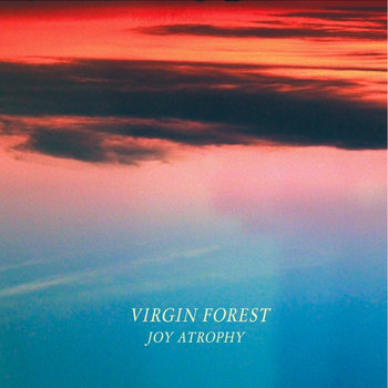 Joy Atrophy cover art