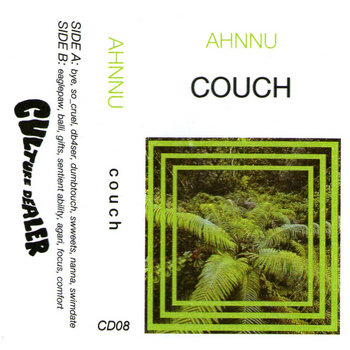 Couch cover art