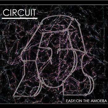 Circuit - Single cover art