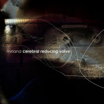 Cerebral Reducing Valve cover art
