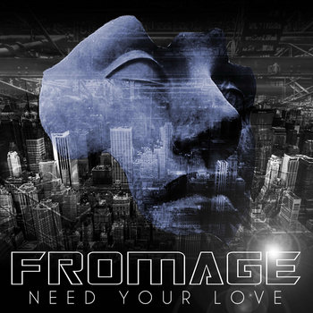 "Fromage Disco ""Need Your Love"" cover art"