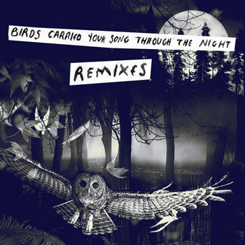 Birds Carried Your Song Through The Night REMIXES cover art