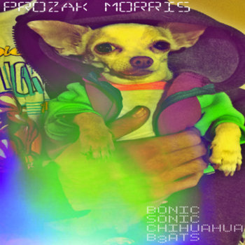 Bonic Sonic Chihuahua Beats (LP) cover art
