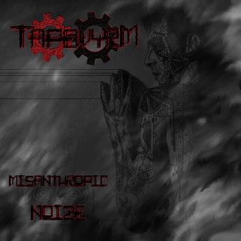 Misanthropic Noize cover art