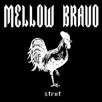 Strut cover art