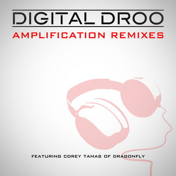 Amplification Remixes cover art