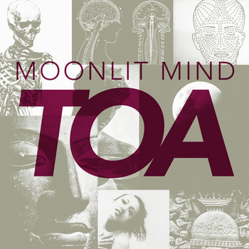 Moonlit Mind cover art