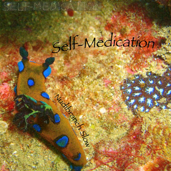 Nudibranch Slow cover art