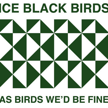 As Birds We'd Be Fine cover art