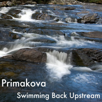 Swimming Back Upstream cover art
